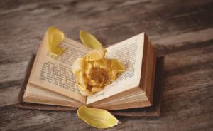 Salon du Livre Jeunesse Wimereux (62)
